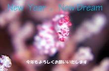 $広部俊明オフィシャルブログ「水中探検家広部俊明 海を行く!」Powered by Ameba